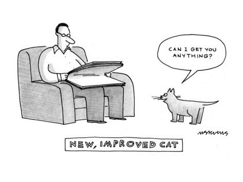mick-stevens-new-improved-cat-can-i-get-you-anything-new-yorker-cartoon
