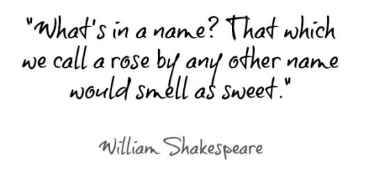 William-Shakespeare-quote-530x256