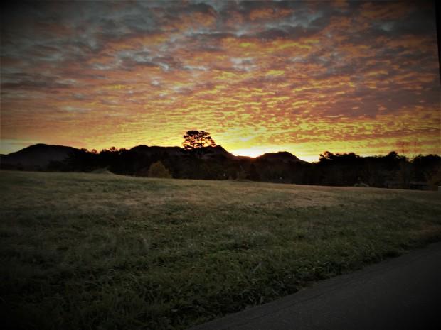 Sunrise-Weaver 2