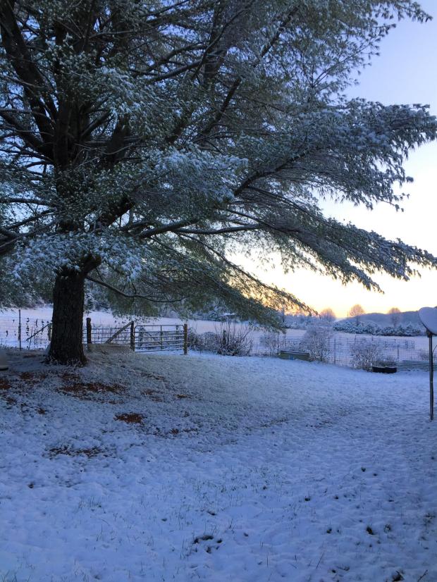 Winter 2019 (3).jpg